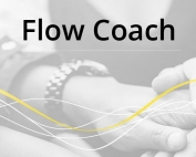 Product-Pic-FLOW_COACH